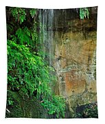 Cool And Refreshing Tapestry