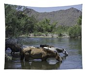 Cooling Off Tapestry