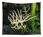White Palm Flower In Costa Rica Tapestry