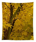 Coral Maple Fall Color Tapestry