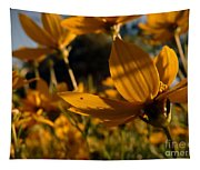 Coreopsis Summer 2010 Tapestry