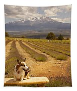 Corgi And Mt Shasta Tapestry