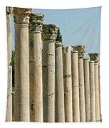 Corinthian Columns In Turkey Tapestry