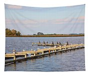 Cormorants And Seagulls On Old Dock Near Blackwater  National Wildlife Refuge Near Cambridge Md Tapestry