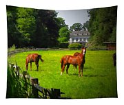 Corralled Horses - Featured In And Lets All Participate And Abc Groups Tapestry