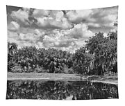 Country Lake 2 Tapestry