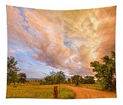 Country Road Into The Storm Front Tapestry