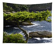 Courageous Tree  Tapestry