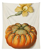 Courgette And A Pumpkin Tapestry