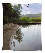 Cove Tapestry