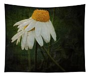 Covered Tapestry