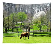 Cow Grazing In Pasture In Spring Tapestry