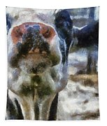 Cow Kiss Me Photo Art Tapestry