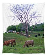 Cows In Rolling Hills Tapestry