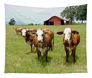 Cows8931 Tapestry