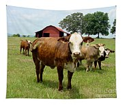 Cows8945 Tapestry
