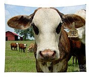 Cows8957 Tapestry