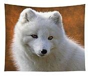 Coy Arctic Fox Tapestry