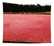 Cranberry Harvest 4 Tapestry