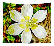 Cream Cup In Park Sierra Near Coarsegold-california Tapestry