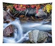 Creek At North Lake Ca_1 Tapestry