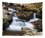 Creek In Maine Img 6377 Tapestry