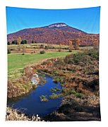 Creek In The Valley Tapestry
