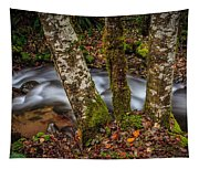 Creek With Trees Tapestry