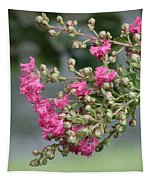 Crepe Myrtle After The Rain Tapestry