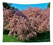 Crepey Myrtle Tree In Istanbul-turkey Tapestry