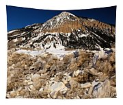 Crested Butte Tapestry
