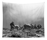 Donkey Train On Croagh Patrick Tapestry