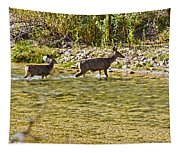 Crossing The River Tapestry