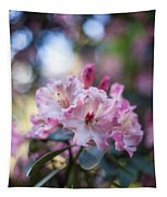 Crown Of Rhodies Tapestry