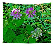 Crown Vetch And Catnip In Pipestone National Monument-minnesota Tapestry