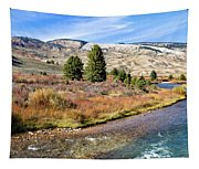 Crystal Creek In The Gros Ventre Tapestry