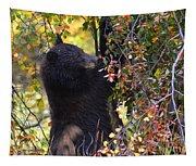 Cub Watch Tapestry