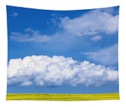 Cumulus Clouds Building Over Canola Tapestry