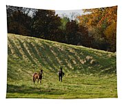 Curious Horses Tapestry