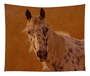 Curious Pony With Spots Tapestry