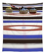 Curling Rocks On Ice Tapestry