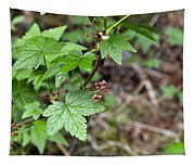 Currant Flower Tapestry