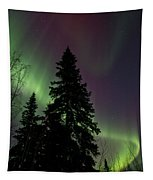 Curtain Of Colours Tapestry by Priska Wettstein