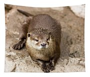Cute Otter Portrait Tapestry