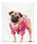 Cute Pug Wearing Sweater Tapestry