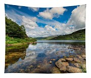Cwellyn Lake Wales Tapestry
