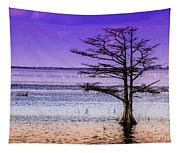 Cypress Purple Sky 2 Tapestry