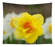 Daffodil Standout Tapestry