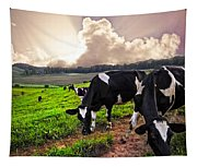 Dairy Cows At Sunset Tapestry