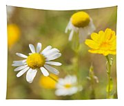 Daisies On Summer Meadow Tapestry
